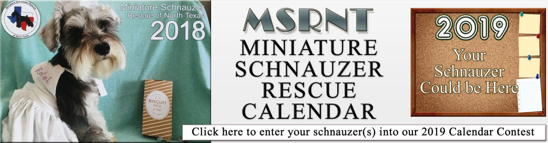 Homepage 3 Sophie Calendar