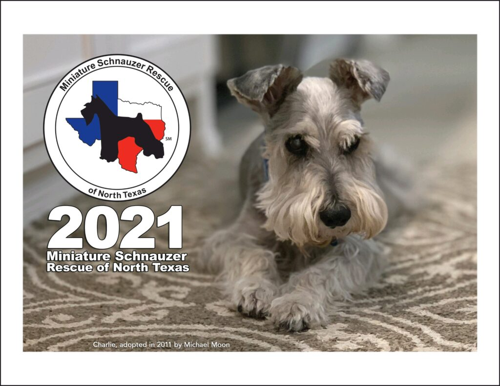 msrnt 2021 calendar cover
